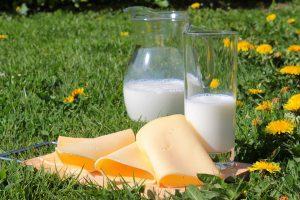 leche y lactosa