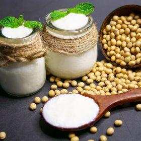 Yogures vegetales – Guía y consejos para comprar yogures vegetales de calidad